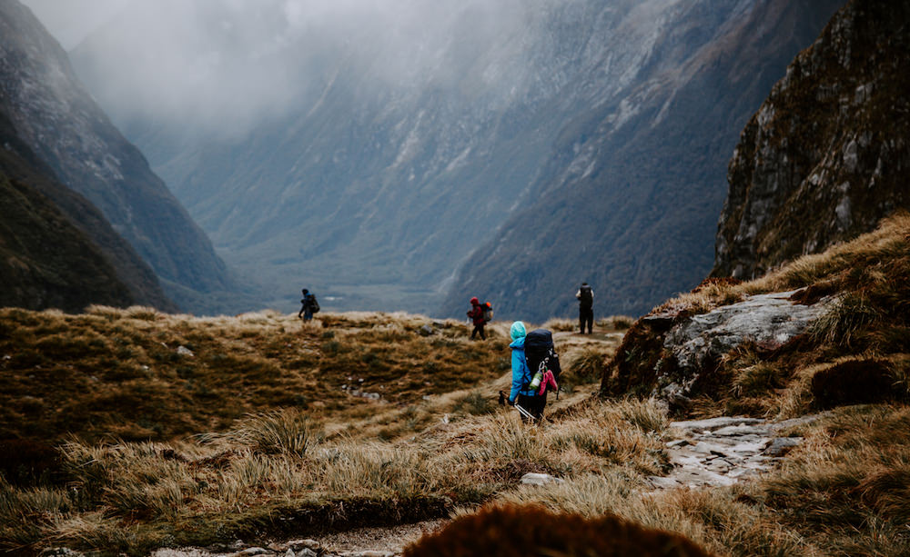 milford track viewpoint